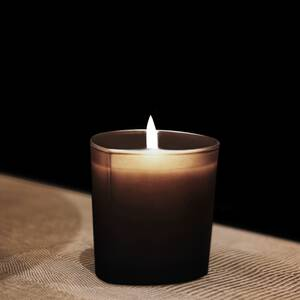 Bois D'Encens Luxury Candle